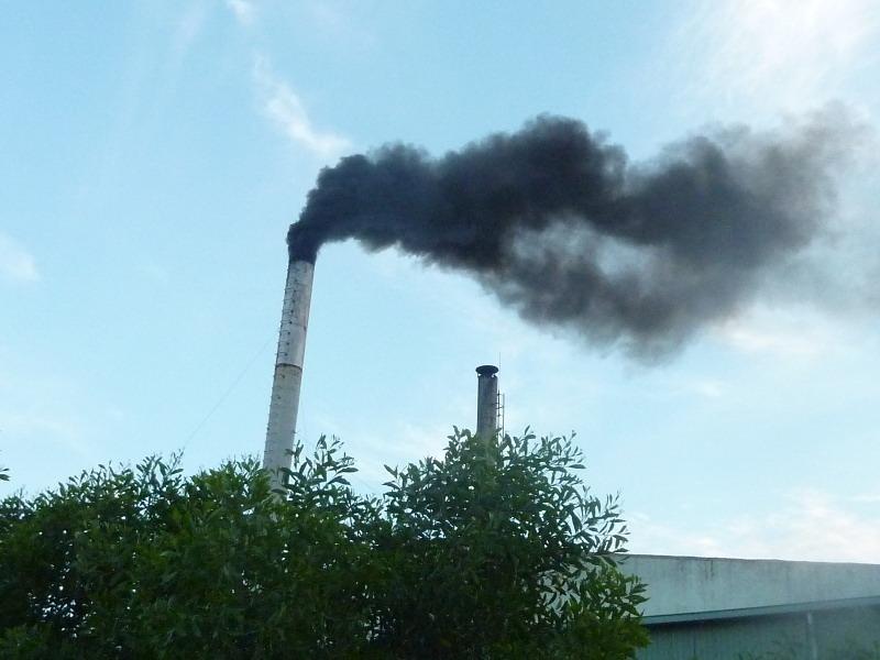 dịch vụ thẩm định báo cáo đánh giá tác động môi trường