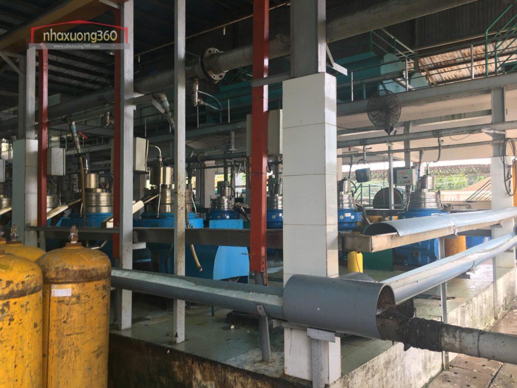 Thiết kế nhà máy sản xuất cao su Mardec Sài Gòn
