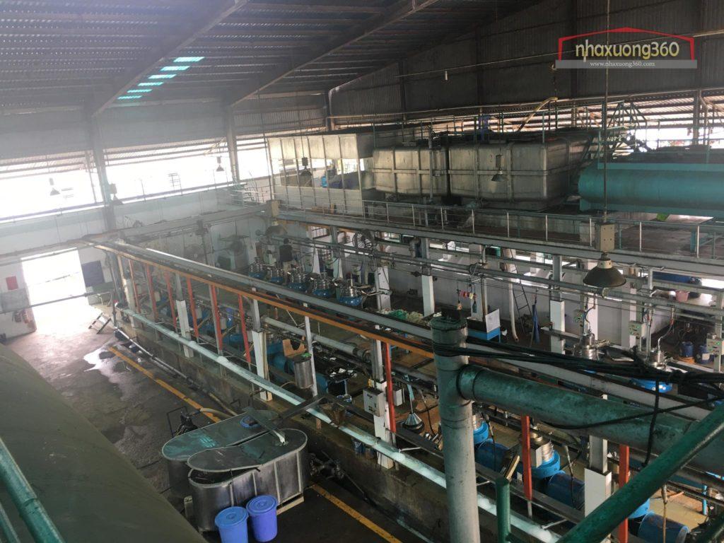 Tư vấn thiết kế nhà máy chế biến cao su Mardec